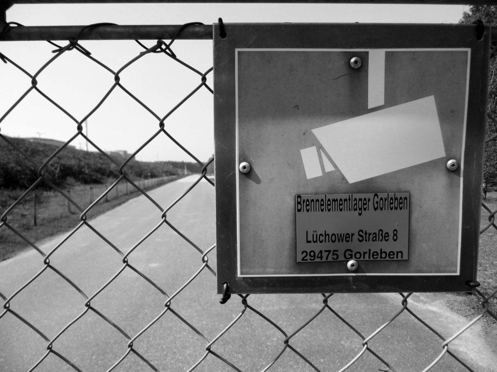 Quessantschafe, Border Collies und Wendland Revoluzzer Ⓒ Hardi P.Schaarschmidt