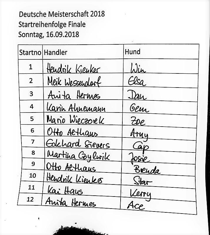 Die Besten der Besten - Border Collies - Deutsche Meisterschaft 2018