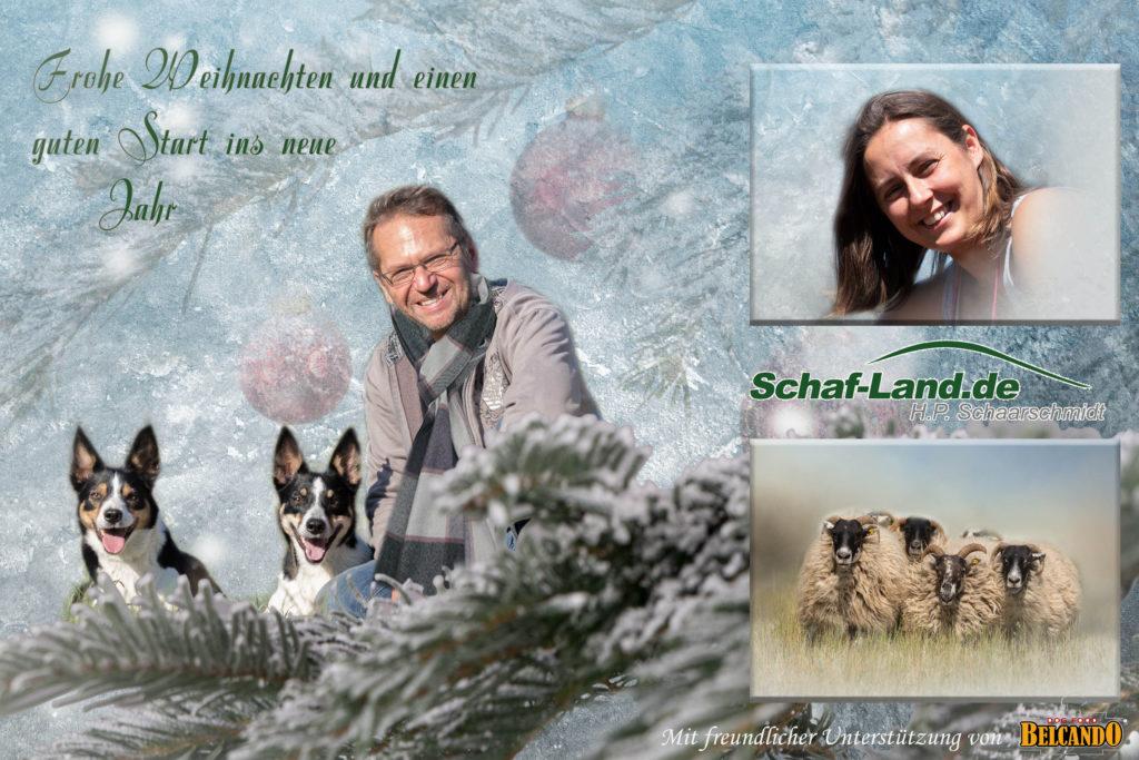 Weihnachtsgrüße an alle Border Collie Besitzer, Hunde Liebhaber und alle Natur-Freunde